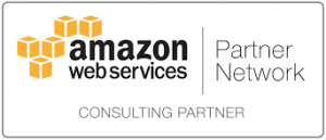 Consulting Partner AWS